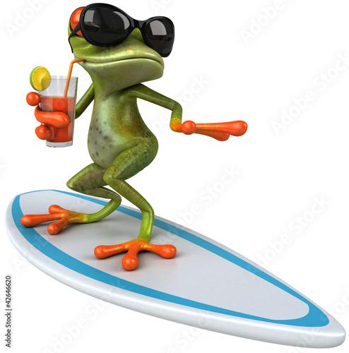 Foto-Stoff bedruckt - Frog surfing (von Julien Tromeur)