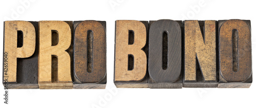 pro bono word in wood type Canvas Print