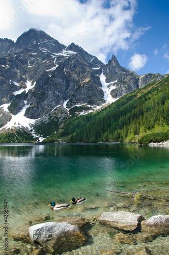 Morskie Oko mountain lake in Polish Tatra mountains