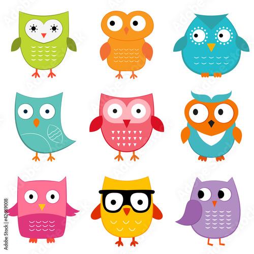 Canvas Prints Owls set