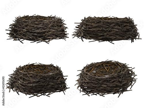 Photo Nest, isolated on white background