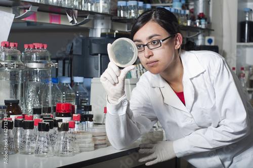 Fotografía  Mujer científico mirando muestra
