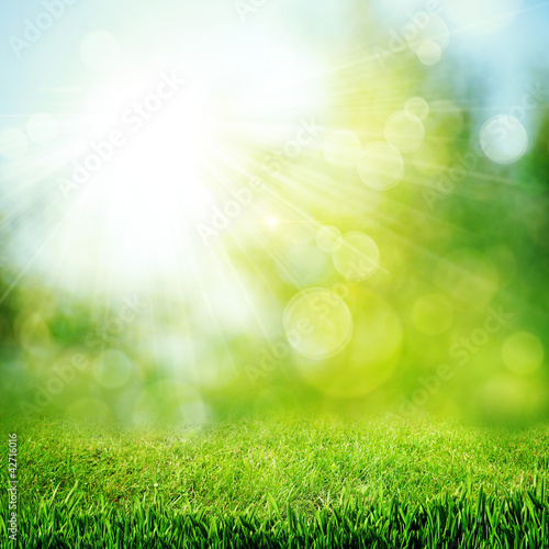 Foto auf Leinwand Frühling Under the bright sun. Abstract natural backgrounds