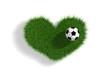 canvas print picture - Fussball-Leidenschaft