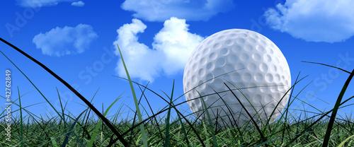 Valokuva  Golf Ball On Green Grass