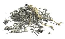 Pile Of Bones With Skeleton 2