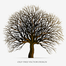 Tree Vector Silhouette Illustration Design