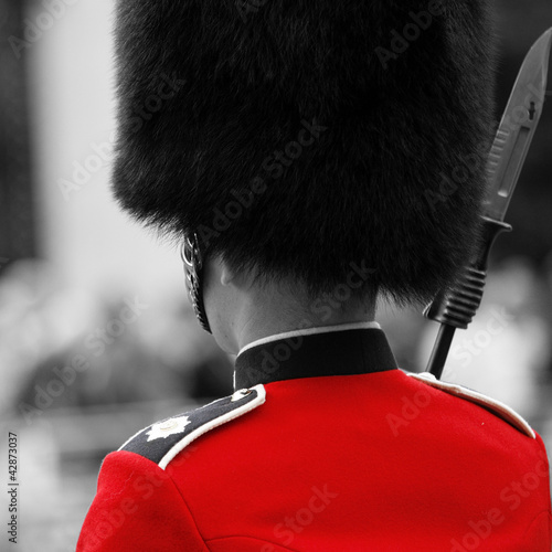 Tuinposter Rood, zwart, wit Queen's soldier at Trooping the color, 2012