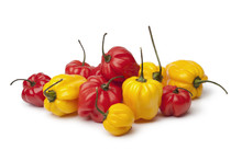 Yellow And Red Scotch Bonnet C...
