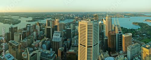 plakat Panorama miasta Sydney
