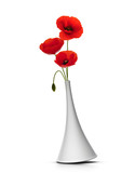 vase with three red poppies over white background