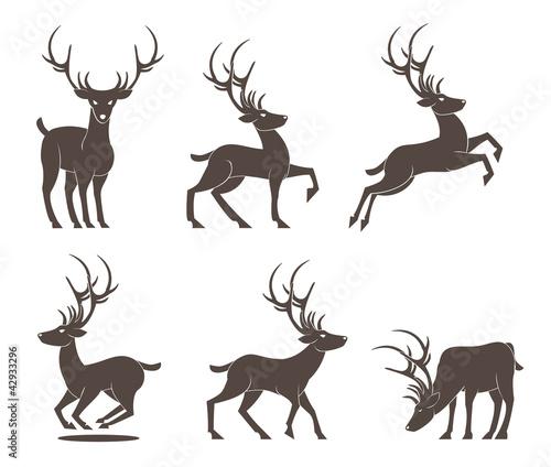Photo Deer Set  vector