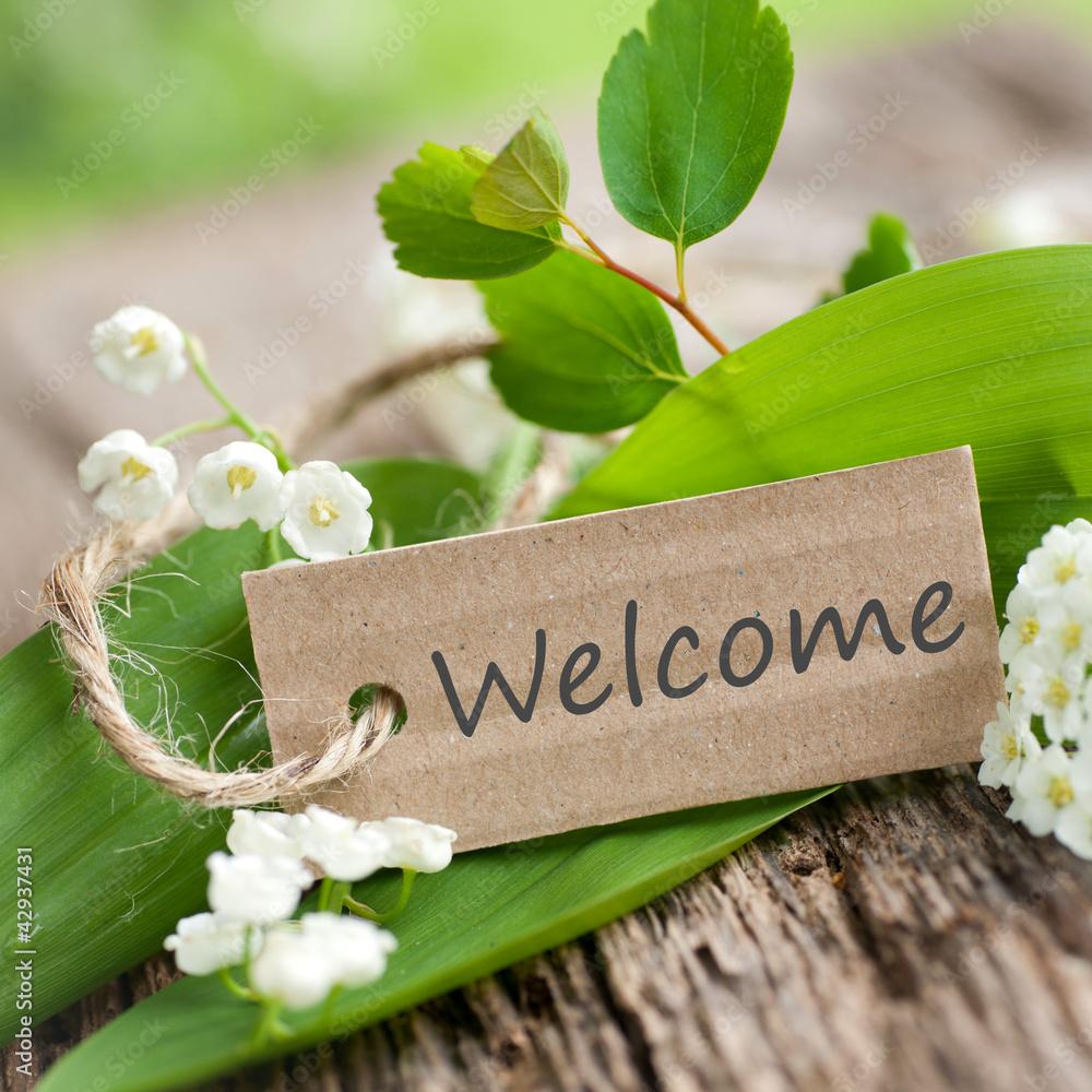 Plissee mit Motiv - Welcome