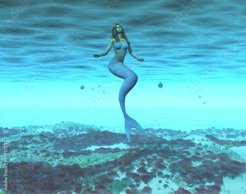 Wall Murals Mermaid Sirena