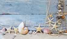 Maritimer Hintergrund: Strandgut, Muscheln Und Seesterne