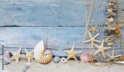 Foto-Leinwand - Maritimer Hintergrund: Strandgut, Muscheln und Seesterne