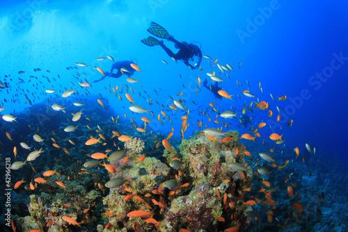 Staande foto Koraalriffen Scuba Divers swim over a coral reef