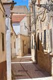 Alejki. Pietramontecorvino. Puglia. Włochy. - 43081871