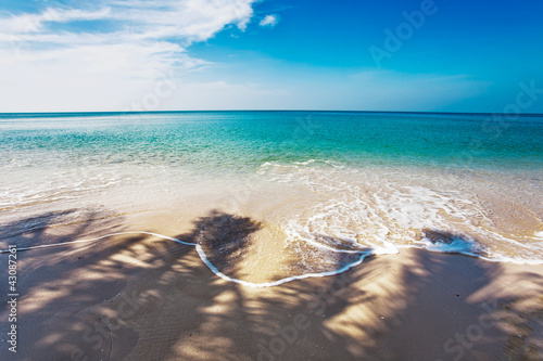 Fototapety, obrazy: Exotic tropical beach.