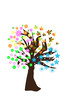 four seasons in the tree vector