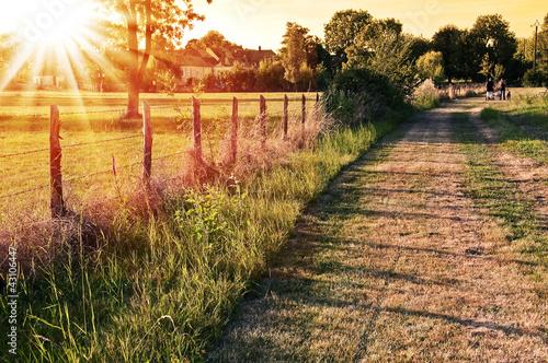 Fotografiet Coucher de soleil à la campagne - Vaas, Sarthe - France
