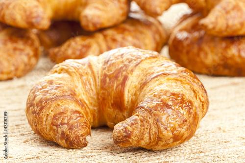 Fotografie, Obraz  Freshly Baked Croissant