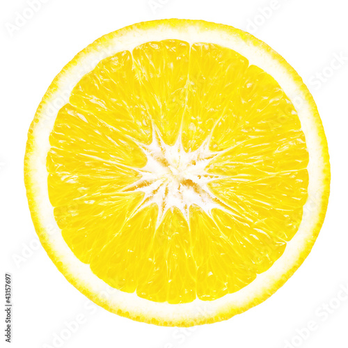 Aluminium Prints Slices of fruit Slice of lemon on white background