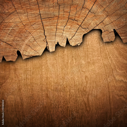 Poster Bois cracked wood board