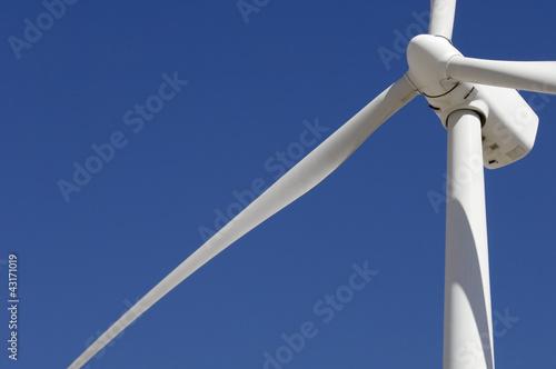 Fotografía  windmill