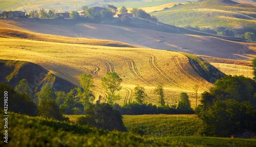 Keuken foto achterwand Rijstvelden typical Tuscany landscape, Italy