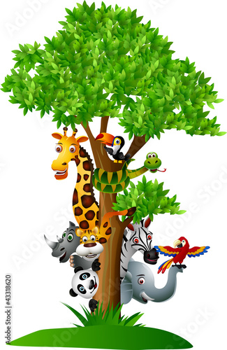 zwierzatka-safari-ukrywajace-sie-za-drzewem