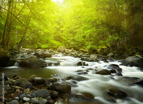 Printed kitchen splashbacks River Mountain River in the wood