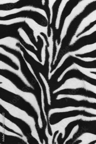 In de dag Zebra Background of zebra skin pattern