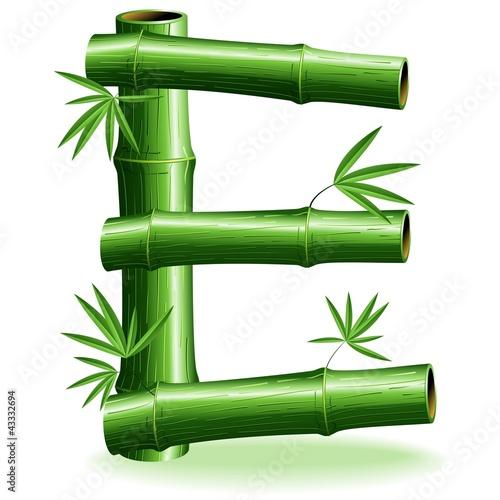 Foto auf AluDibond Ziehen Bambù Lettera E - Bamboo Logo Sign Letter E - Vector