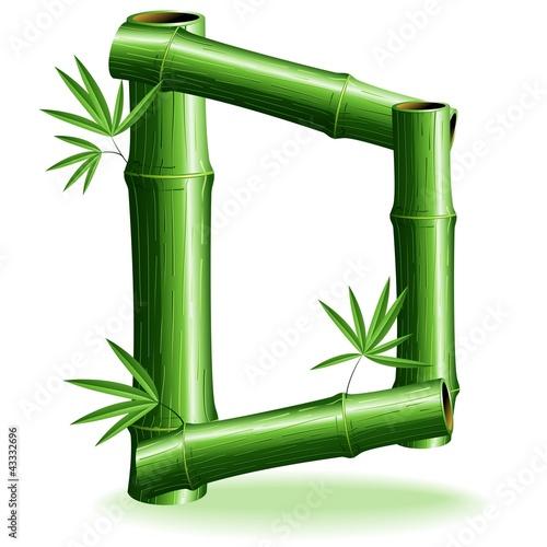 Foto auf AluDibond Ziehen Bambù Lettera D - Bamboo Logo Sign Letter D - Vector