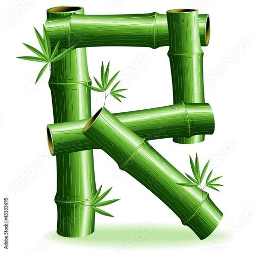 Foto auf AluDibond Ziehen Bambù Lettera R-Bamboo Logo Sign Letter R-Vector