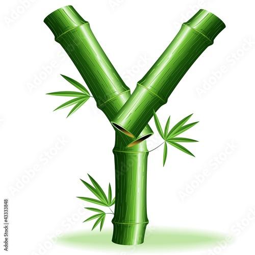 Foto auf AluDibond Ziehen Bambù Lettera Y-Bamboo Logo Sign Letter Y-Vector