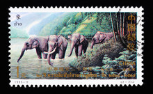 A Stamp Shows The Thai Elephan...