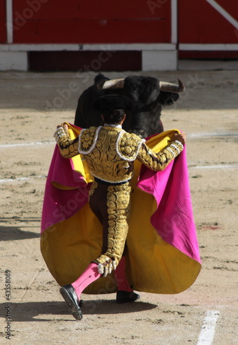 Poster Bullfighting corrida