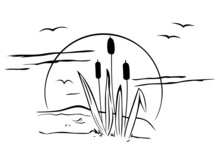 Cattails On Illustration