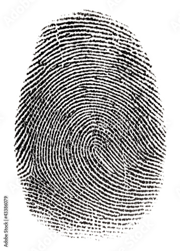 Real fingerprint in white background Super macro #43386079