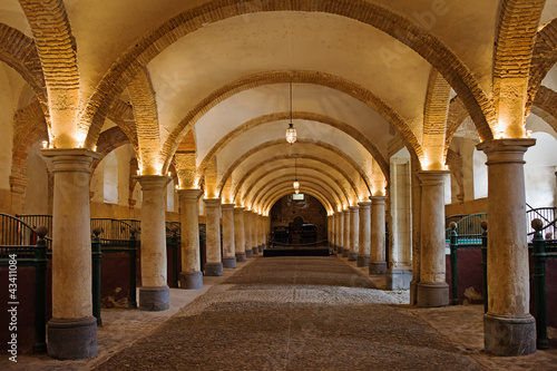Foto op Canvas Artistiek mon. Royal Stables in Cordoba