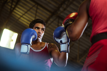 FototapetaTwo male athletes fight in boxing ring