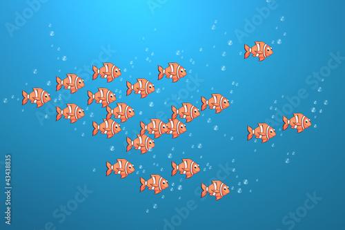 03 Cownfisch Schwarm Wallpaper Mural
