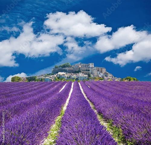 Canvas Prints Lavender Lavande en Provence, village provençal en France