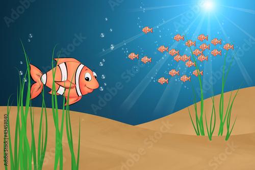 Photo 04 Fisch mit Hintergrund
