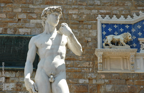 Photo  David di Michelangelo in Piazza della Signoria, Firenze, Italia