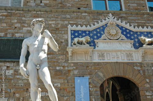 Photo  David di Michelangelo in Piazza della Signoria, Firenze, Italia