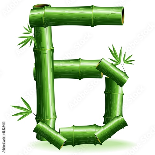 Foto auf AluDibond Ziehen Bambù Numero 6-Bamboo Logo Sign Number 6-Vector