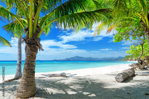 Deurstickers Tropical strand beach